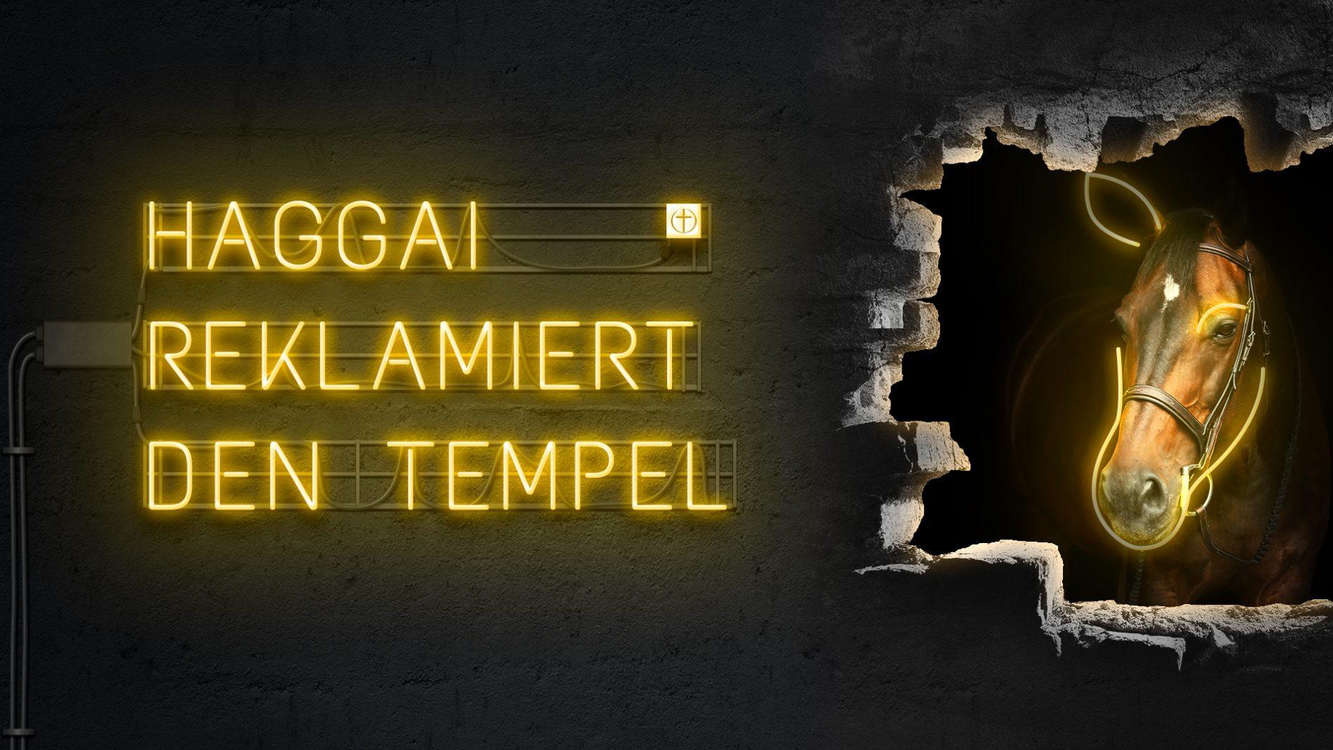 Haggai reklamiert den Tempel (Zwölf Propheten X)