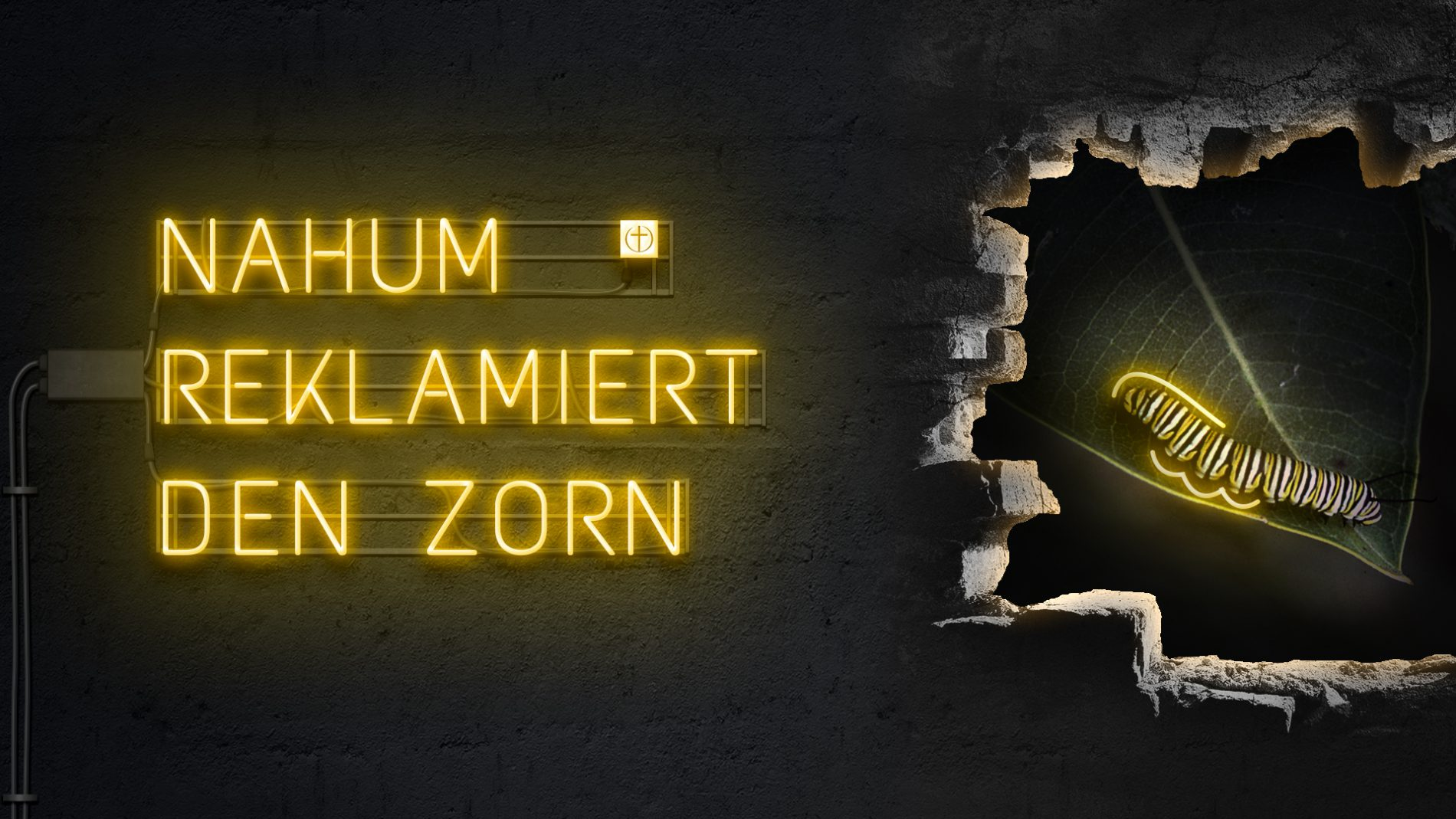 Nahum reklamiert den Zorn (Zwölf Propheten VII)